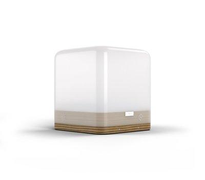 Premium Lucis™ Zebrano Portable Lamp